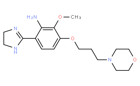 2017080116 - 6-(4,5-dihydro-1H-imidazol-2-yl)-2-methoxy-3-[3-(morpholin-4-yl)propoxy]aniline | CAS 1032571-01-9